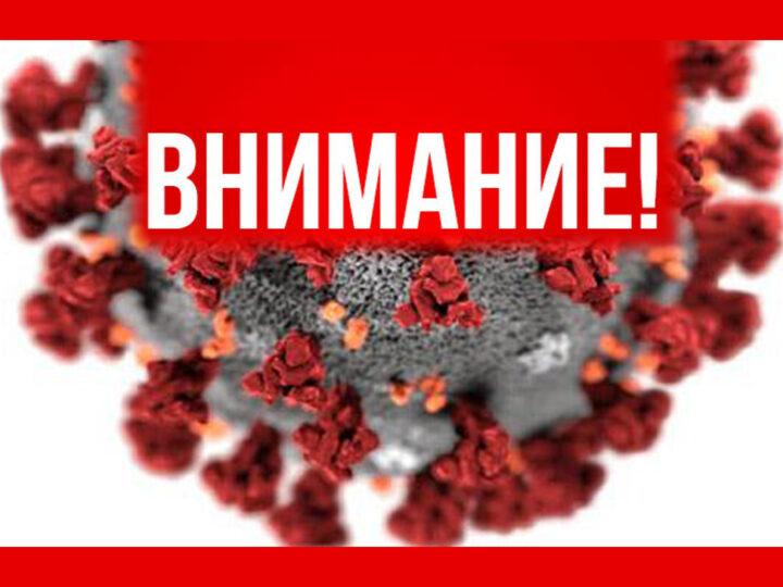 Приказ ректора МАРХИ. Об организации дистанционного обучения.